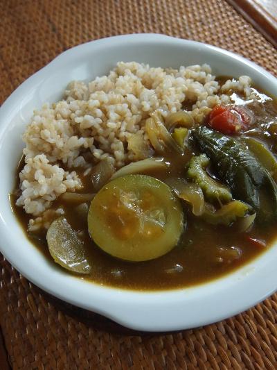 ゴーヤと夏野菜のカレー