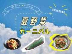夏野菜レシピ特集